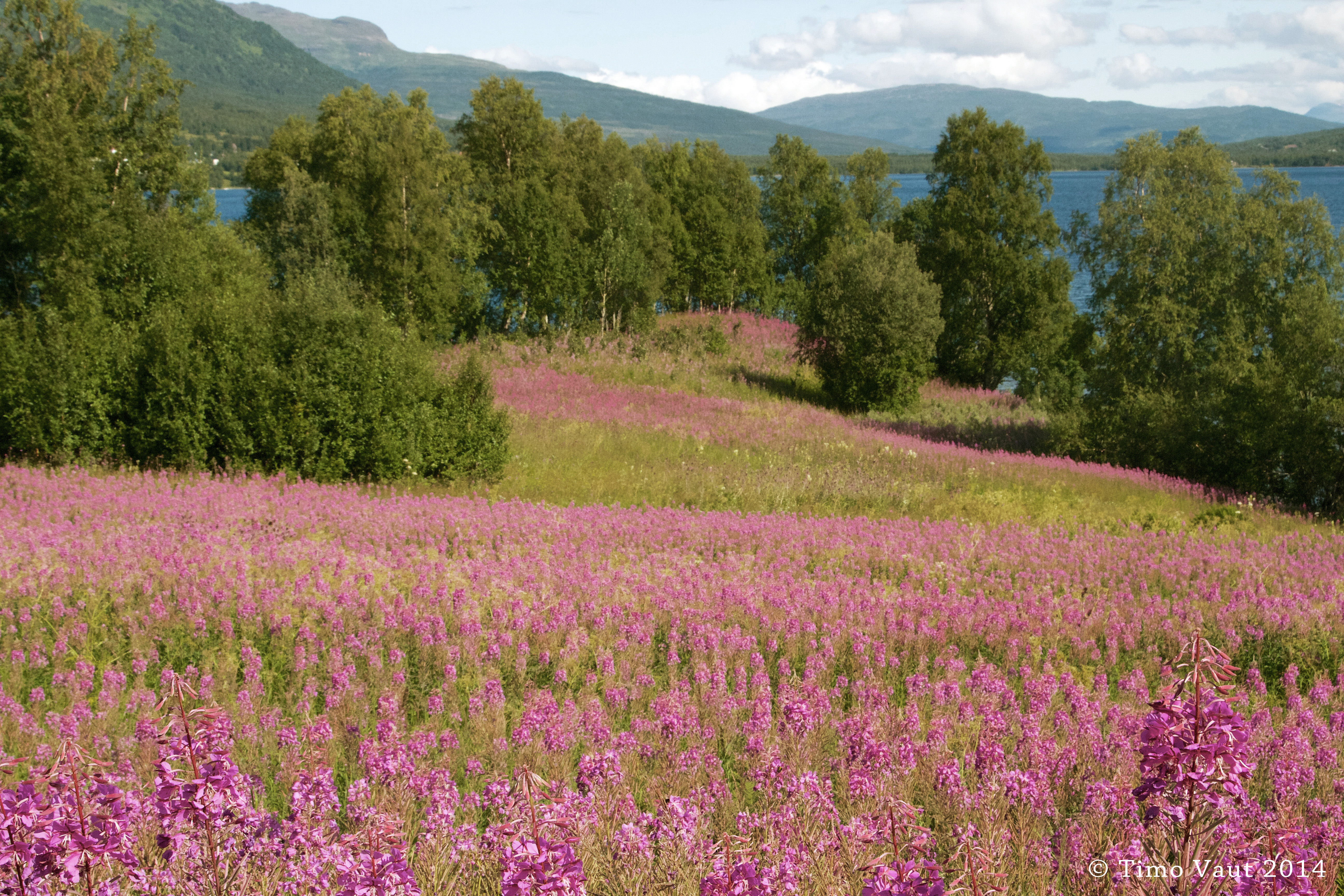 Norwegen-